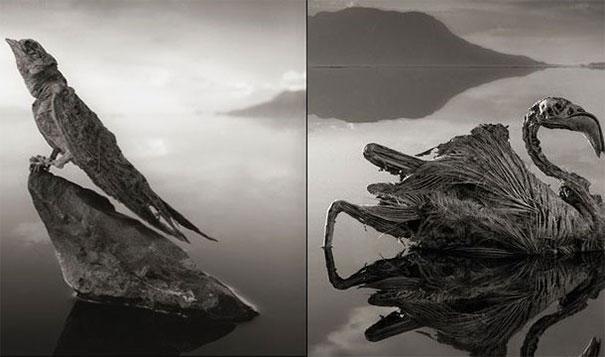 smrtonosno jezero