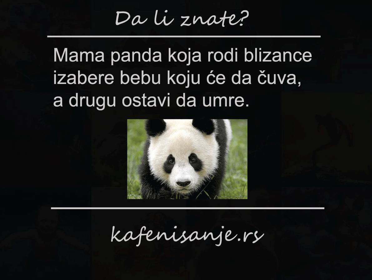 pande