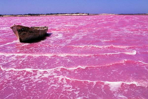 rozo jezero