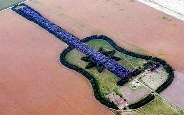 suma u obliku gitare
