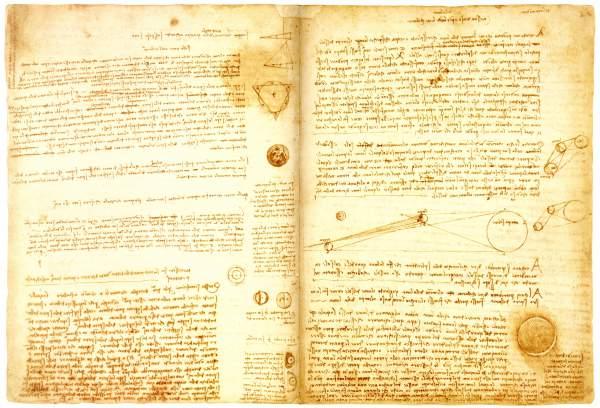 kodeks lester