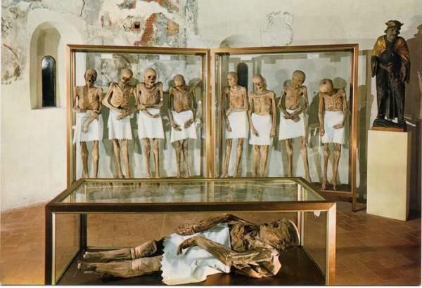 mumije iz venconea 10