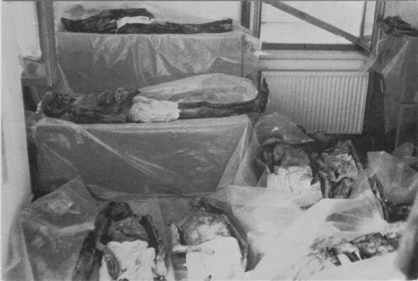mumije iz venconea 11