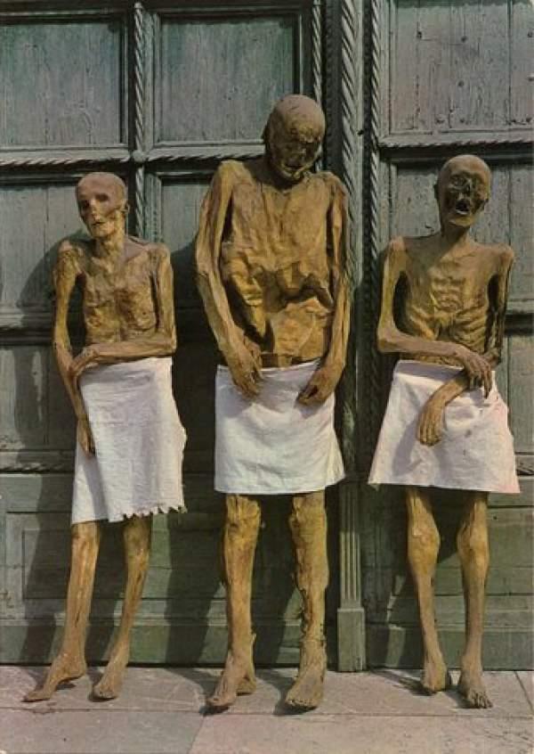mumije iz venconea 6