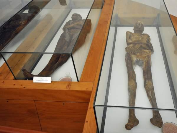 mumije venzone italija