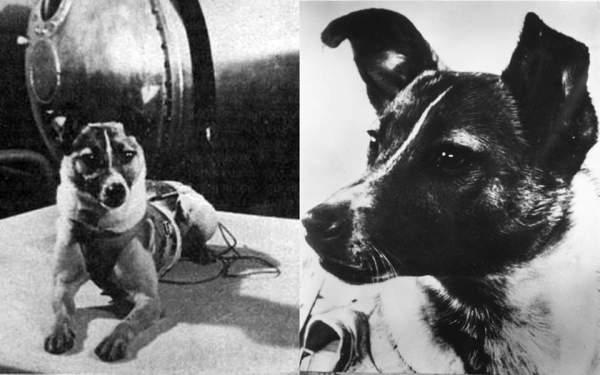 prvi pas u svemiru