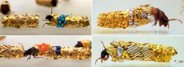 tularaši oklop od zlata
